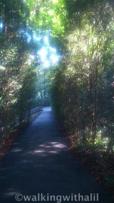 Wonderful paths