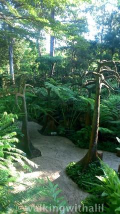 New wing botanic gardens
