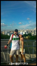 Looking over Telok Blangah Hill at Henderson Waves