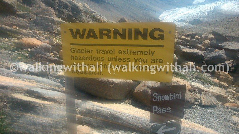 Hiking reflections: It's not just about thegoal