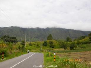 Walking past Tuk Tuk towards Tomok.