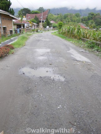 Some potholes and you'll see worse with muddy patches across the path.