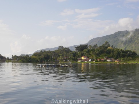 The little fish farms which I kayaked around.