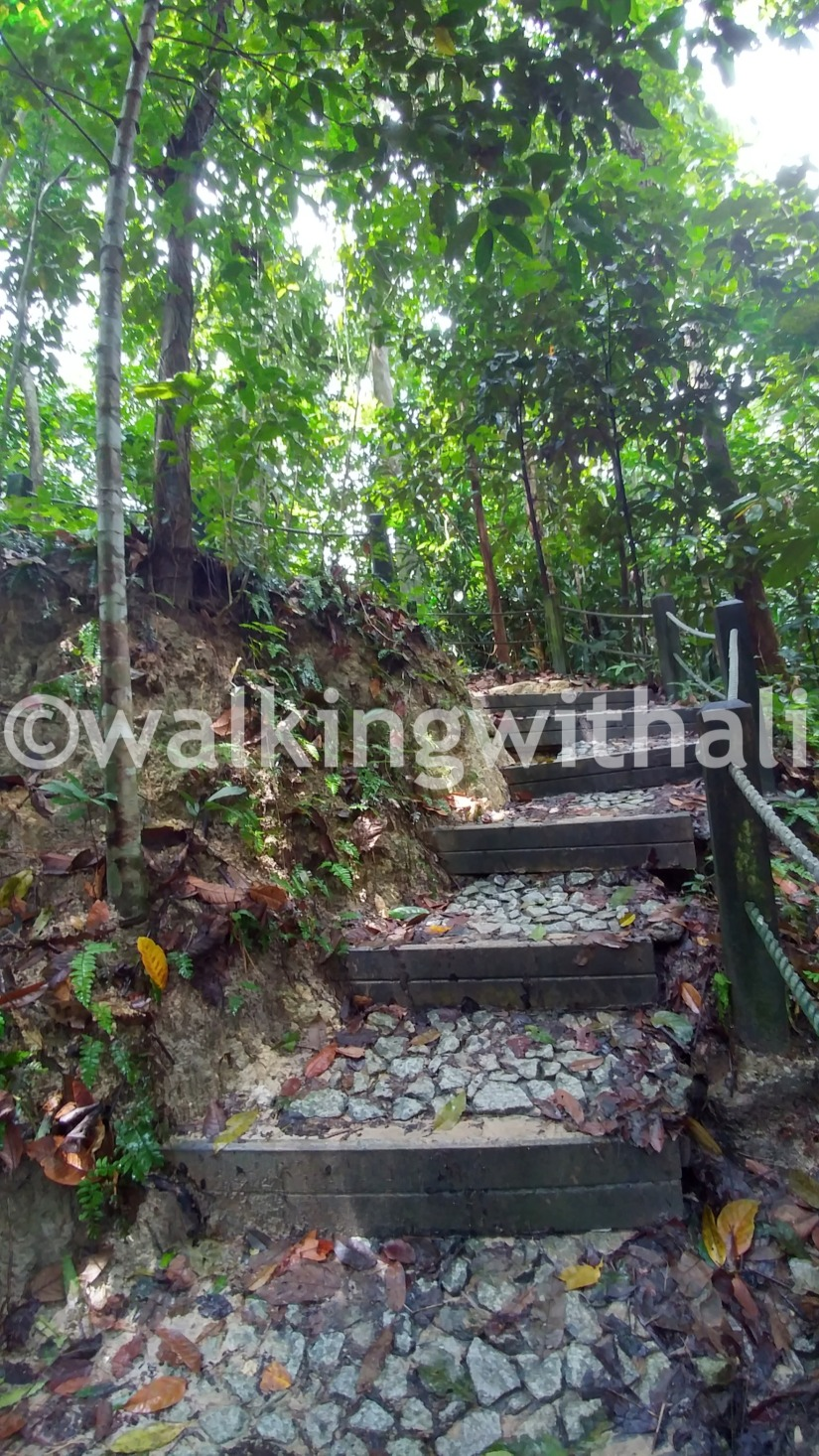Where can you go hiking in Singapore?