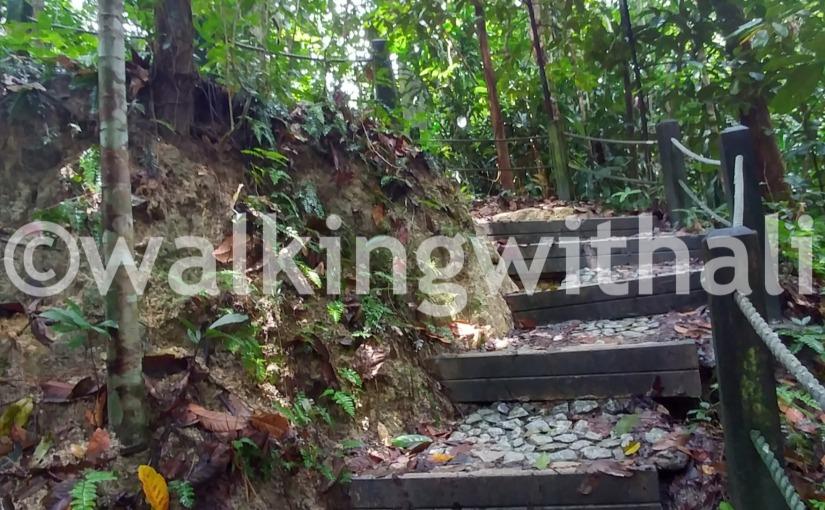 Where can you go hiking inSingapore?